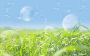 transparent-bubbles-wallpapers_13836_1280x800
