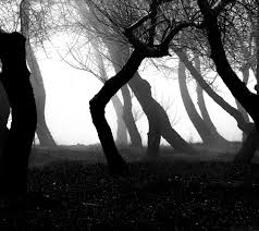 light in darkness3
